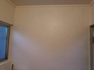 ペンキ塗布後の壁側面
